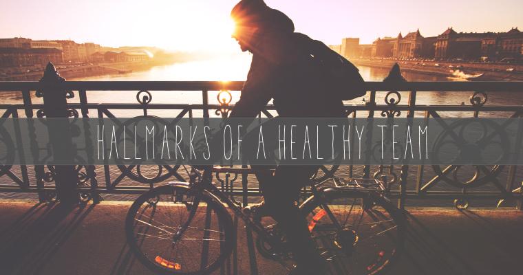 5 Hallmarks of a Healthy Team