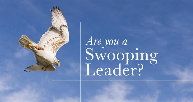 Beware of Swooping Leadership